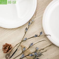 Disposable Sugarcane Paper Fiber Plates From Manufacturer